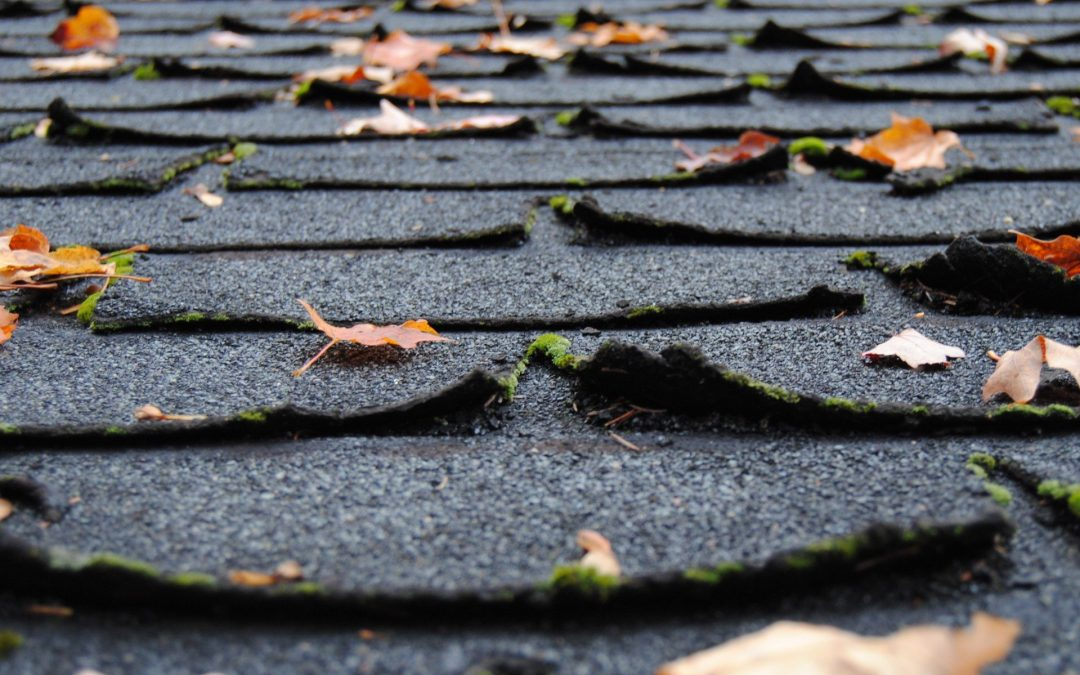 The Early Warning Signs: Protecting Your Roof