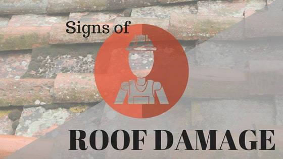 Roof Damage: Out of Sight, Out of Mind