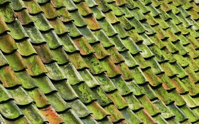 The Most Common Roof Problems, According to Roofers