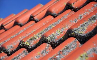 Why You Require Residential Roof Maintenance Regularly