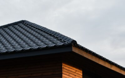 Why You Should Always Let Professionals Handle Roof Repairs